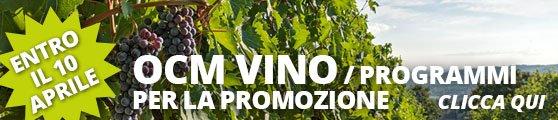 Cia Toscana | OCM VINO: programmi per la promozione...