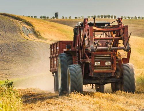 Sicurezza sul lavoro in Toscana. Un successo la formazione per ridurre gli incidenti in agricoltura