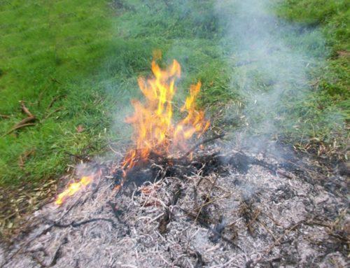 Abbruciamenti vietati fino al 15 aprile 2020. La Regione Toscana proroga il rischio incendi