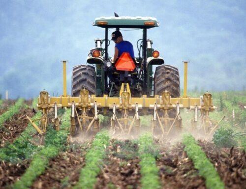Cia: richiesta proroga contributi previdenziali per imprenditori agricoli