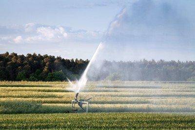 Problemi per l'approvvigionamento idrico in agricoltura