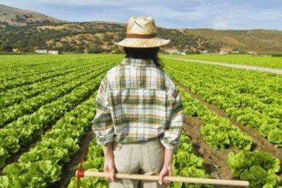 20151201_cianazionale_campo_agricoltore_giovani_agricoltori