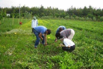 20151209_cianazionale_giovani-agricoltori-agia