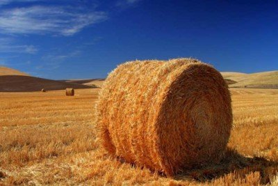 20151222_cianazionale_terreno_agricolo