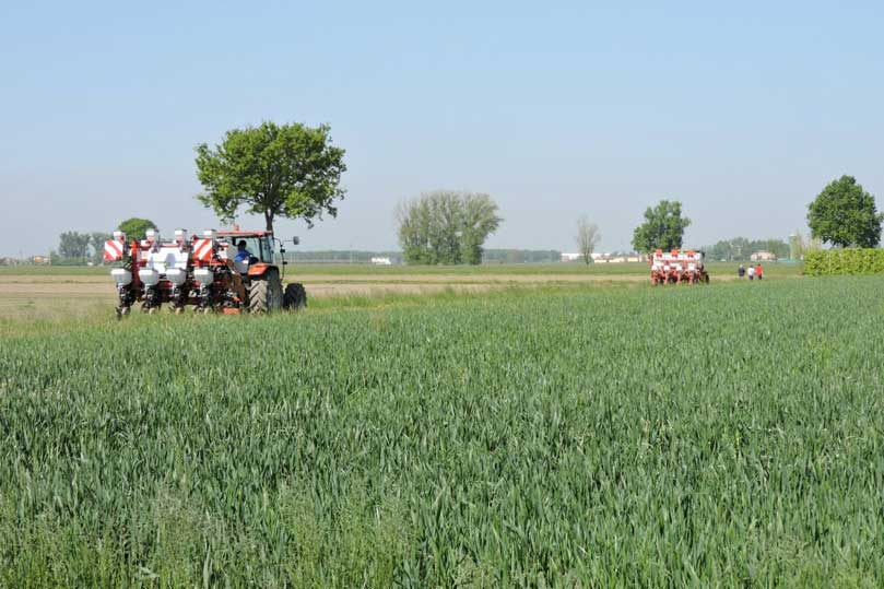 Gasolio agricolo bene indagine conoscitiva della camera for Settore della camera