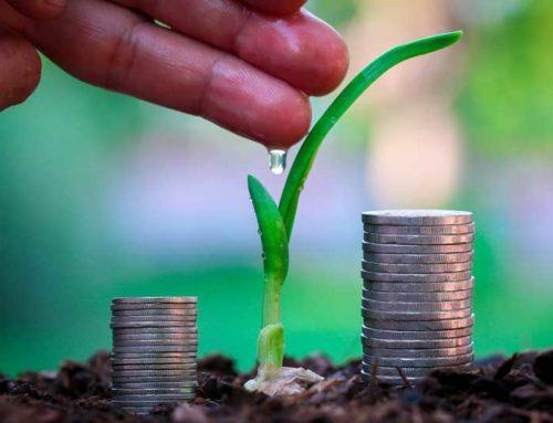 Accesso al credito, agricoltura lasciata indietro