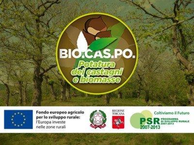 Biocaspo