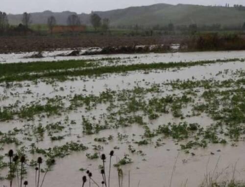 Sicurezza dalle alluvioni. Capecchi: «Si intervenga prima che arrivi il maltempo e i campi si trasformino in laghi pieni di detriti»
