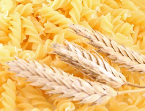 Grano duro-pasta. Agrinsieme: sviluppare filiera italiana di qualità