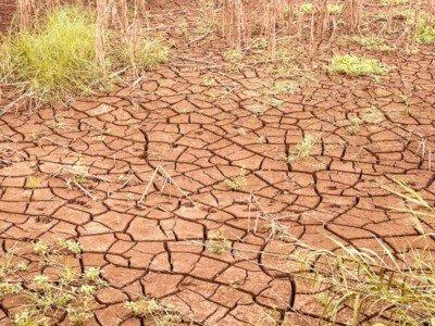 Danni alle coltura per la siccità