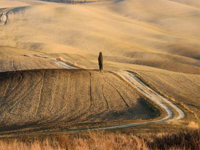 Estate a secco. L'agricoltura toscana ha sete