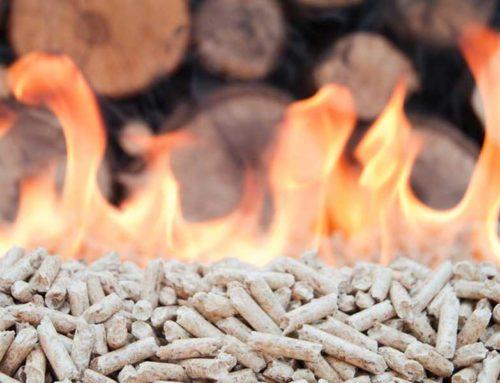 Energia dal legno: un settore da 4 miliardi e 30mila addetti. Torna Progetto Fuoco a Verona