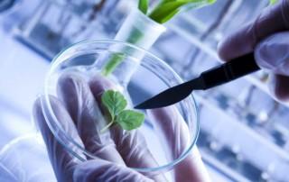 biotecnologie genetiche