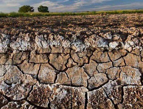Difesa del suolo, interventi per oltre 16 milioni