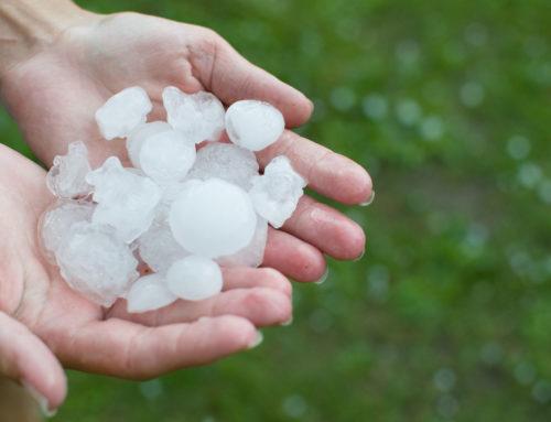Proroga al 14 febbraio per la Misura 5.1 del Psr Toscana. Prevenzione dei danni da calamità naturali