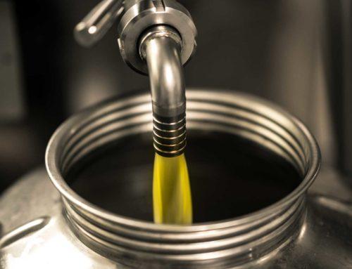 Olio extravergine. Cia: dal Forum nazionale 4 azioni per il rilancio del settore