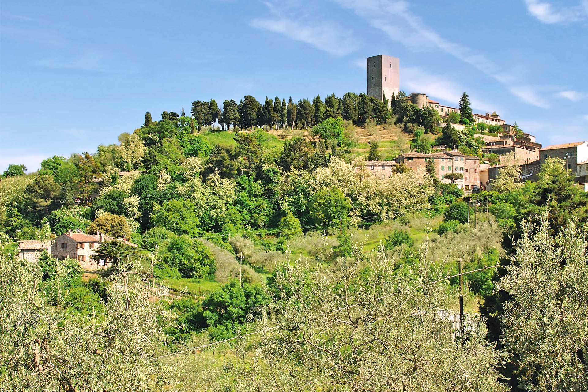 Val di Cecina. Un Distretto per un nuovo modello di sviluppo rurale - Cia Toscana