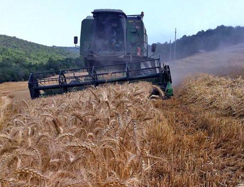 Comunque buon 2020 a tutti gli agricoltori dalla Cia di Pisa
