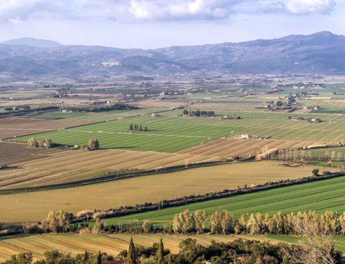 Turismo Verde Cia Grosseto. Gli agriturismi pronti ad accogliere i turisti in sicurezza