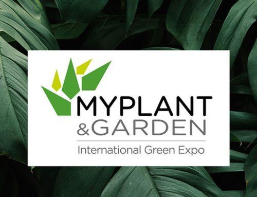 Rinvio della fiera MyPlant & Garden a settembre 2020