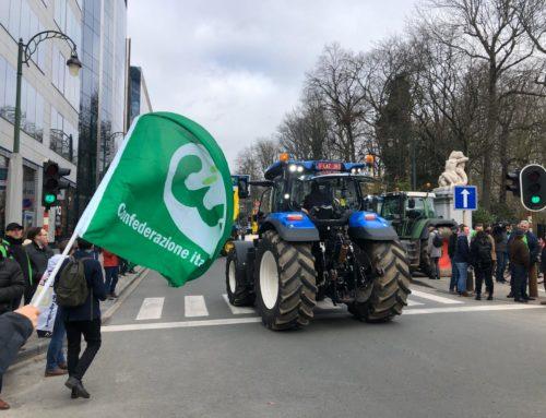 Bilancio Ue. Cia: con il taglio delle risorse Pac a rischio la svolta green