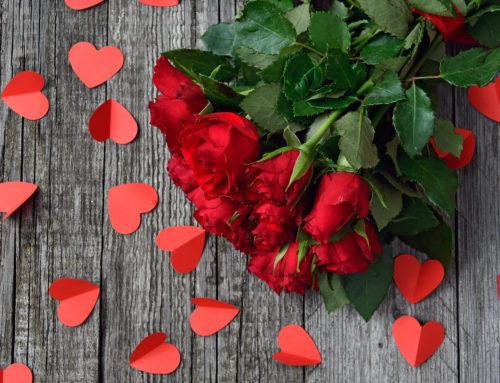 Rose rosse per San Valentino. Pescia: mercato in salute grazie alle importazioni. Il punto della Cia Toscana Centro