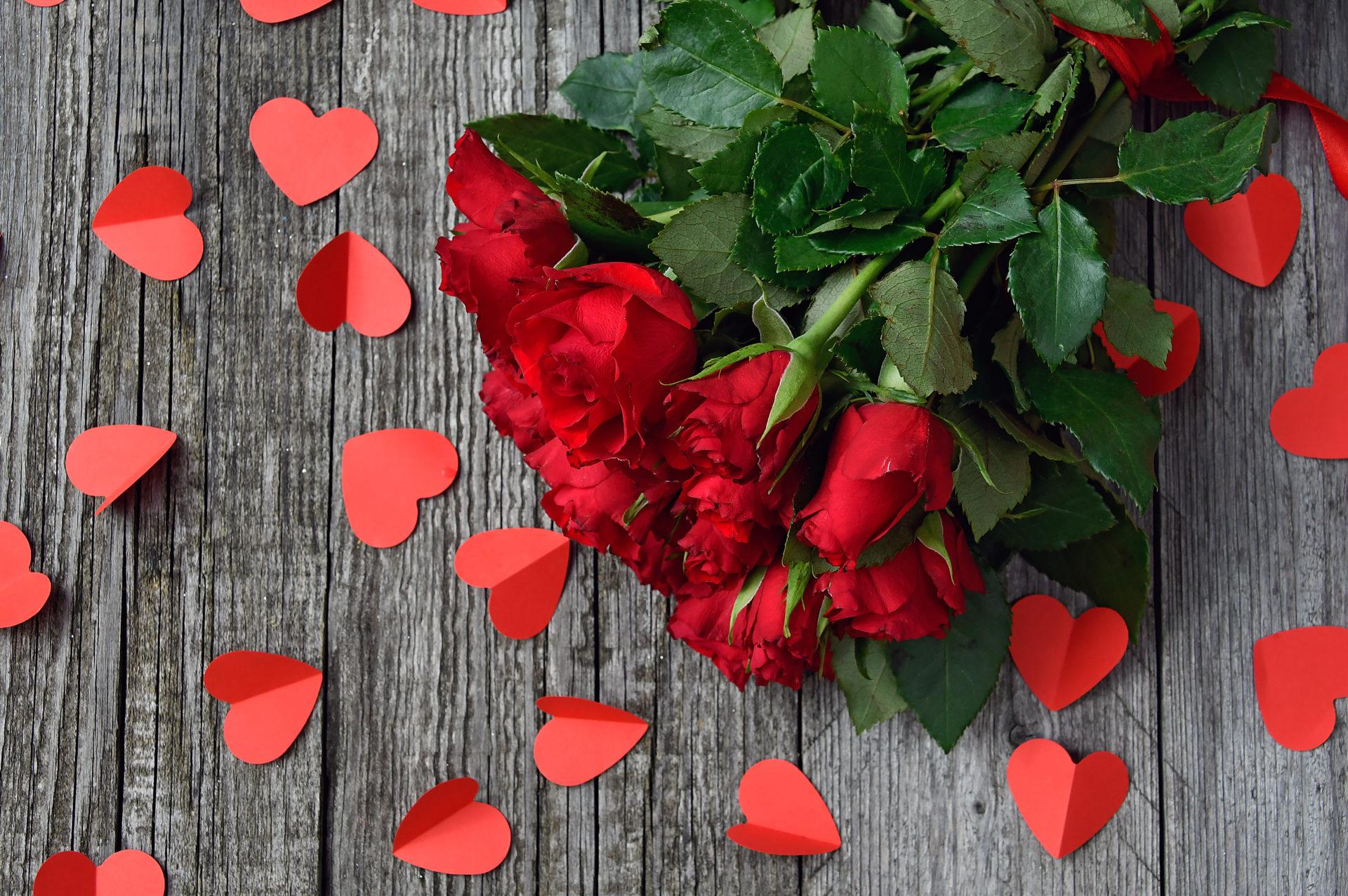 Rose rosse per San Valentino. Pescia: mercato in salute grazie ...