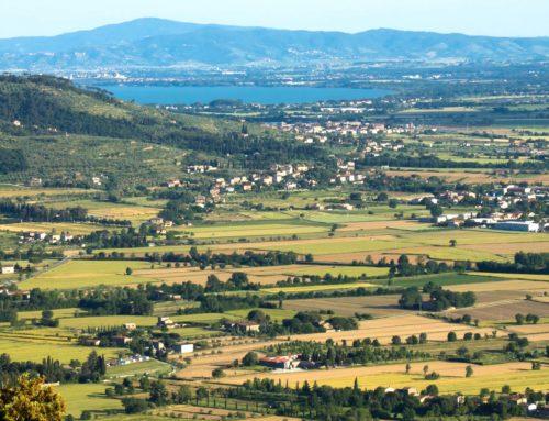 Paesaggio della bonifica in Valdichiana. Dossier al Ministero
