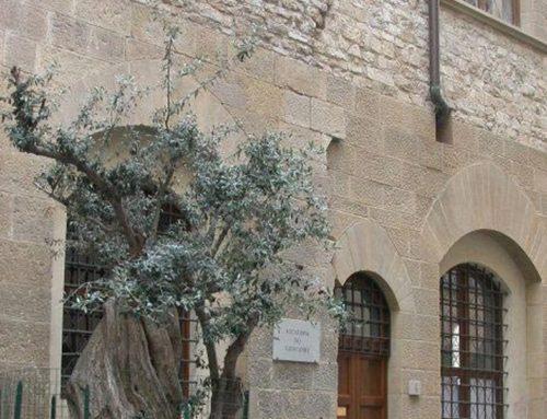 Agrinsieme e Accademia dei Georgofili rinnovano protocollo d'intesa