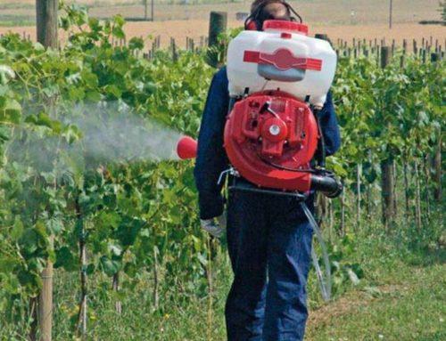 Agrinsieme: serve una proroga per i patentini fitosanitari a causa degli stop per il Coronavirus