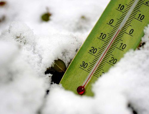 Rabazzi, Cia Grosseto: «Non solo Coronavirus, a mettere in ginocchio l'agricoltura arriva anche il ghiaccio»