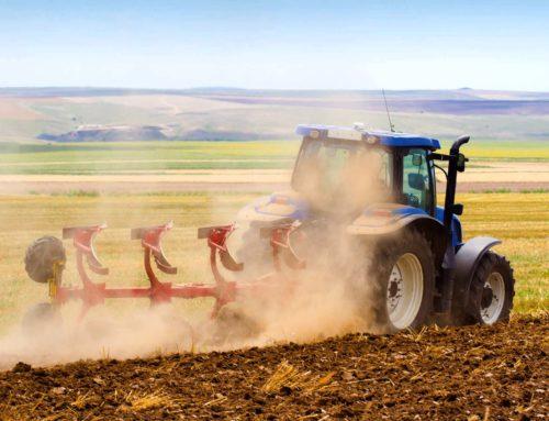 Anp Cia Grosseto: no all'Imu sui terreni agricoli condotti da pensionati