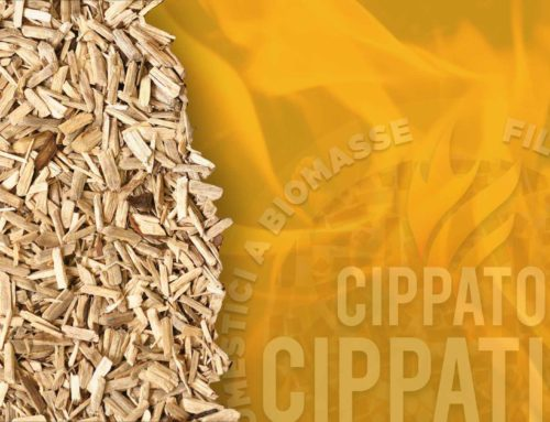 Cippatino: dal legno un prodotto prezioso e versatile