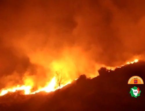 Abbruciamenti vietati in Toscana. Remaschi: rispettare lo stop per non provocare incendi
