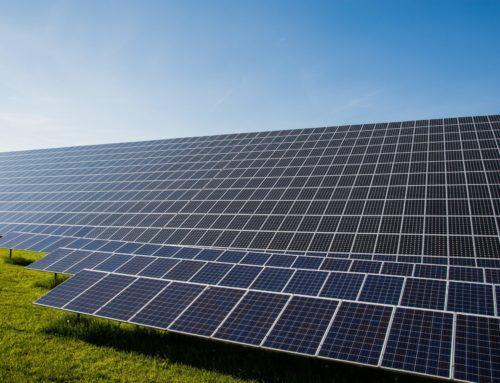 70 ettari di fotovoltaico a Bocca di Cornia (Piombino). Cia Livorno conferma la propria contrarietà ai parchi fotovoltaici in area agricola