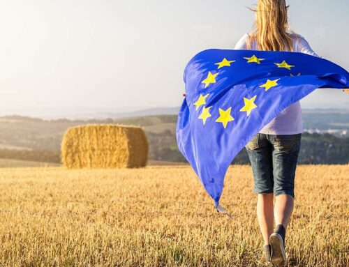 Europa. Cia: ripartire dal Green Deal con l'agricoltura protagonista