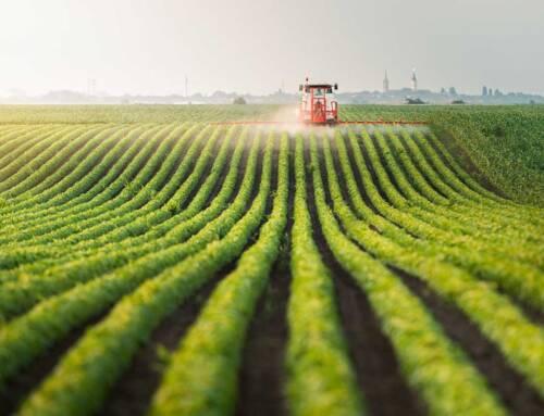 Cia: «Il Parlamento acceleri su cessione credito imposta per agricoltura hi-tech»