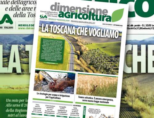 La Toscana che vogliamo. Il numero di settembre 2020 di Dimensione Agricoltura