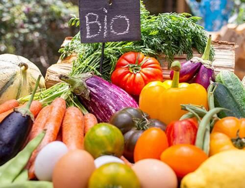 Biologico: oltre 4 mln per nuovi progetti triennali con agricoltori protagonisti
