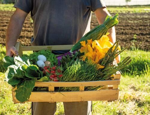 Prodotti agricoli a domicilio. 147 aziende in tutta la Toscana portano l'agricoltura a casa