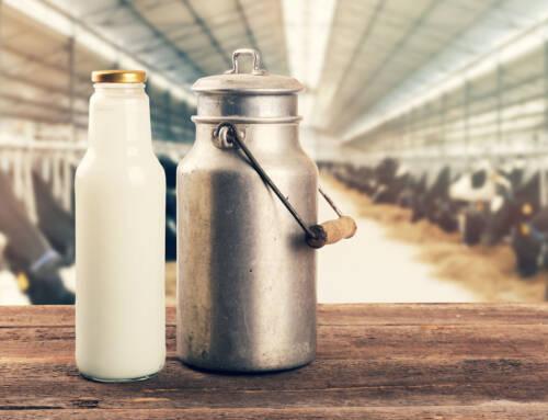 Covid, dalla Regione 879mila euro per il settore lattiero-caseario. Cia: «Boccata d'ossigeno importante per allevamenti e aziende toscane»