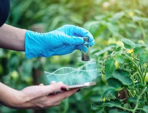 Ue. Cia: rischio sorpasso da UK sul genome editing indispensabile per transizione green