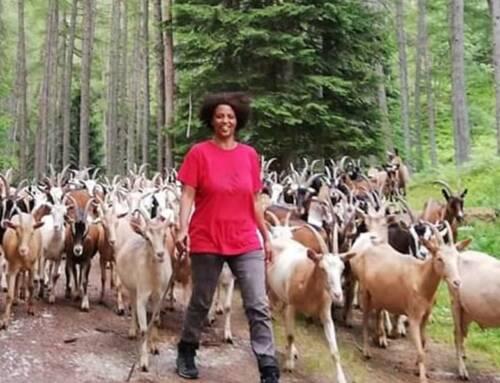 """Agitu. Donne in Campo Cia, addio a un'amica, salveremo le sue """"capre felici"""""""