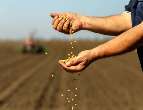 Convase. Si rafforza la sinergia tra il mondo sementiero e quello agroalimentare