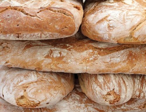 La produzione del pane non è attività agricola. Sentenza shock del Tar del Lazio